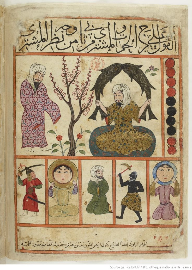 vue 78 - folio 35v, Pisces - The Book of Nativities (Kitab al-Mawalid), attributed to Persian astronomer Abu Maʿschar al-Balkḥī and was later drawn by the painter Qanbar 'Alī Shīrāzī published in 1300 AD.