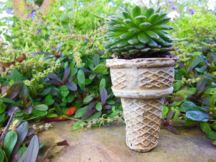 How much fun this this planter?? It makes me want a soft serve cone just looking at it!