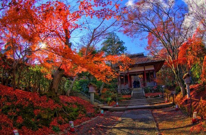 【京都】嵐山・嵯峨野・太秦・桂周辺で人気の観光スポット10選 - おすすめ旅行を探すならトラベルブック(TravelBook)
