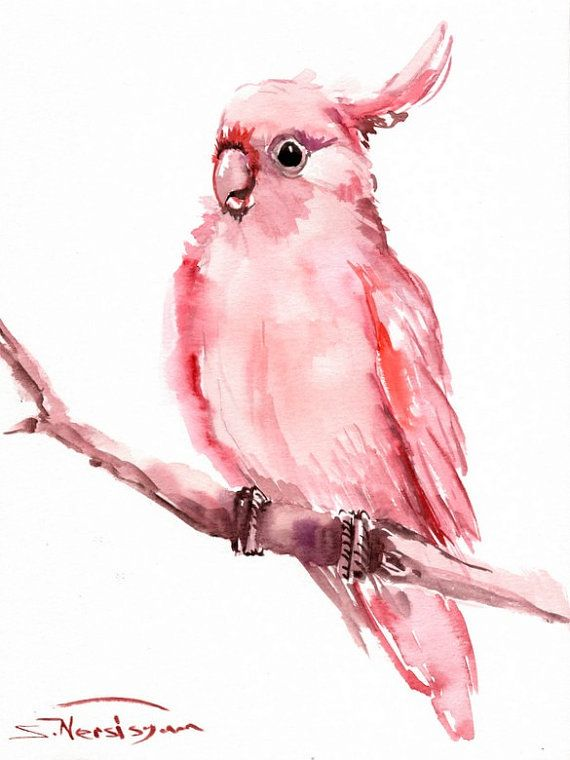 Pink Cockatoo Original watercolor painting 12 X 9 by ORIGINALONLY, $27.00