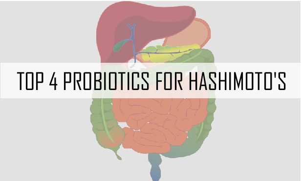 "THE FOUR BEST PROBIOTICS FOR HASHIMOTO'S 2/14/2015 43 Comments    The Four Best Probiotics for Hashimoto's  When I was first searching for a healing plan for Hashimoto's, I learned about the role of the gut in autoimmune disorders.   According to research from Dr. Fasano and colleagues, every person with an autoimmune disorder has something called intestinal permeability, also knows as a ""leaky gut"".   This made a lot of sense to me because I had many of the symptoms of intestinal…"