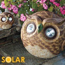 Solar Owls, Solar Garden Lights, Garden Decoration | Solutions