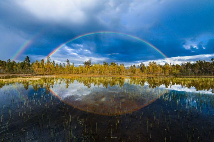 Lapin luonto on ihmeellinen kaikkina vuodenaikoina. #sokoshotelsroadtrip @kpunkka #Lapland #Lappi #Rovaniemi #luontomatkailu #kotimaanloma