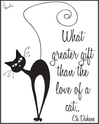 www.donttellanyone.net Cats by Dont Tell Anyone. This is such a cool cat quote