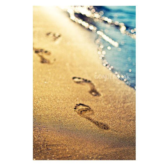 68 best All things on footprints images on Pinterest | Nature ...