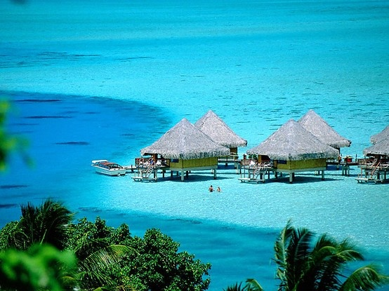 : One Day, Oneday, Frenchpolynesia, Buckets Lists, Dreams Vacations, Blog Tips, French Polynesia, Best Quality, Borabora