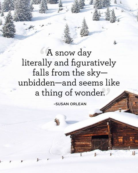 Snow Quotes And Sayings: 1964 Best Christmas Decorations & Crafts Images On