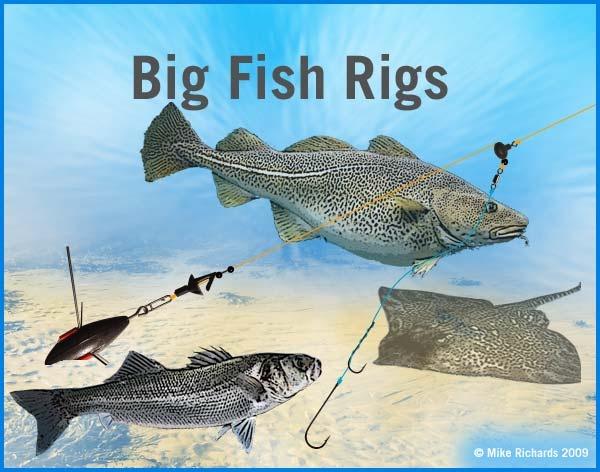 21 best fishing alvey reels salt water down under for Best surf fishing rigs