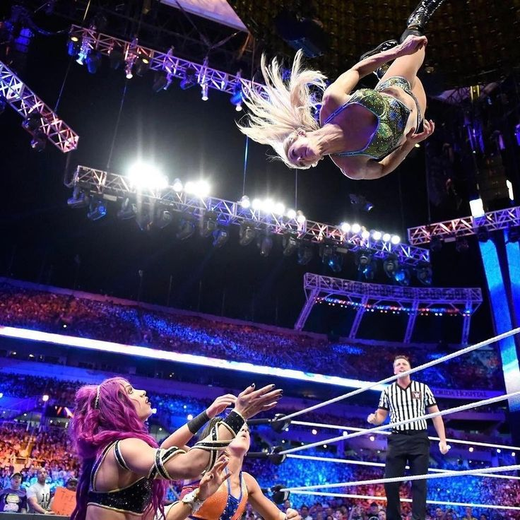 Wwe Diva Diving Out Of The Ring
