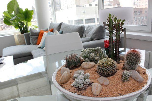 Зеленые экстремалы: 10 «неубиваемых» растений для вашего дома   Свежие идеи дизайна интерьеров, декора, архитектуры на INMYROOM