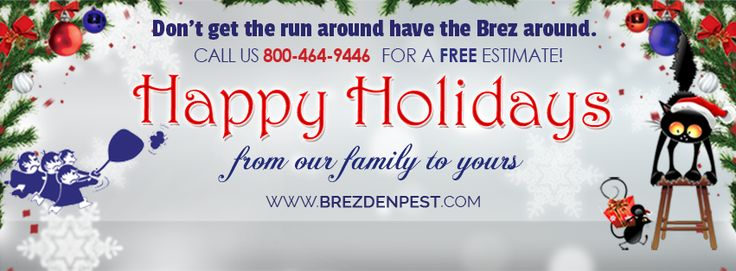 http://www.brezdenpest.com/local-pest-control-tips-how-to-handle-holiday-pests/  Pest Inspection: Local Pest Control Tips & How To Handle Holiday Pests  Late last year, Brezden Pest Control celebrated its 35th year in business protecting the residents of San Luis Obispo county  from bothersome pests in their homes and offices. And it caps off the year with these tips to keep holiday pests at bay... #BrezdenPestControl #HomePestControl