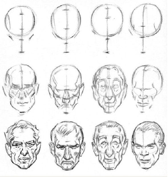 68 best Anatomy of the head and skull images on Pinterest
