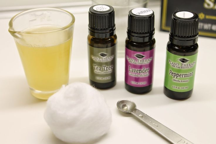 Natural Remedies for Poison Ivy, Oak and Sumac Using Essential Oils   Essential Oils Blog