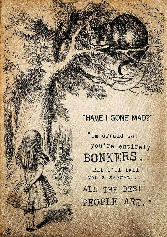 """Have I gone mad?"" ""I am afraid so you're entirely BONKERS. But I'll tell you a secret... All of the best people are."" - Alice in Wonderland."