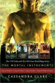City of Bones / City of Ashes / City of Glass / City of Fallen Angels (The Mortal Instruments Series #1-4) I want this!!