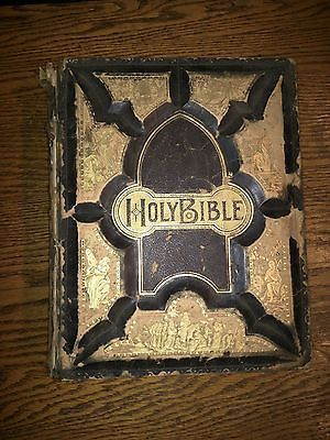 vintage holly bible (1896)
