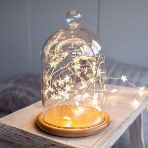 """Glass Bell Jar With Star Micro Fairy Lights 