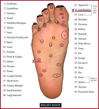 Reflexology/EO's Aid Processing Toxins