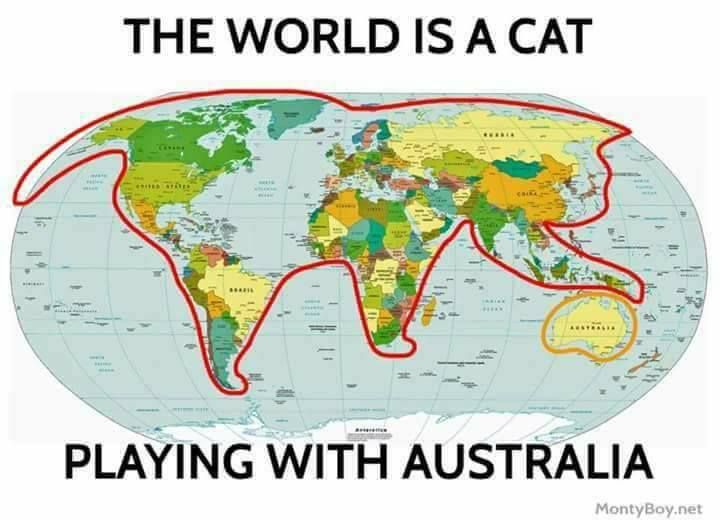 The World Is a Cat Playing Wit...