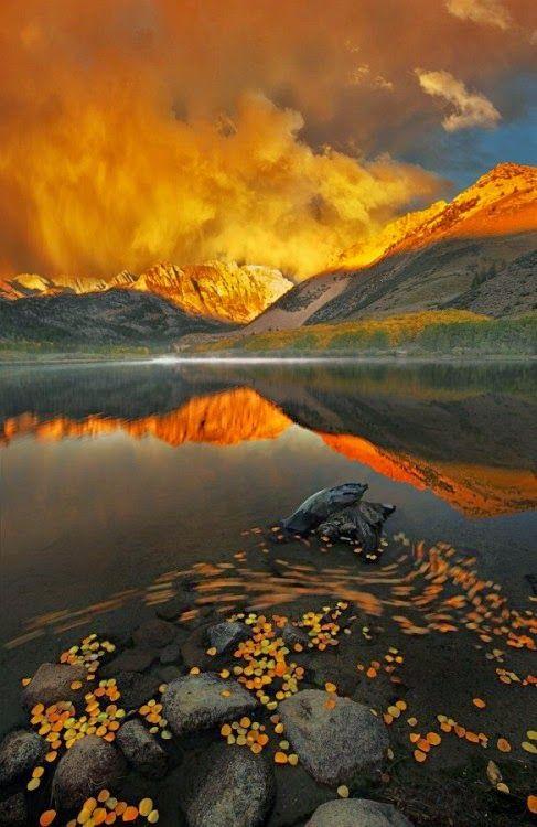 Eldorado National Park  -  Central Sierra Nevada Mountain Range, Bishop, Eastern California   USA