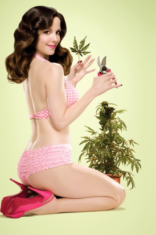Mary Louise Parker as Nancy Botwin
