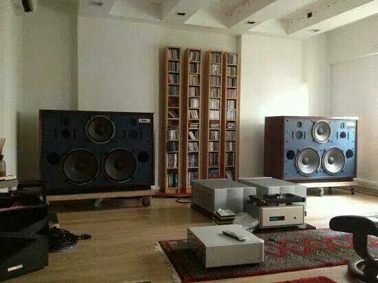Viola AudioLab 2monobloc amps,FM AcousticsFM 1811,JBL monitors