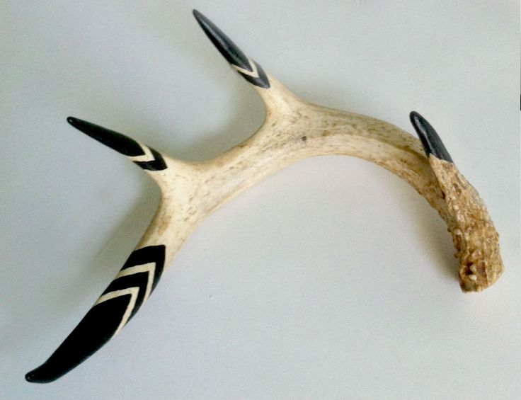 Naturally shed hand painted deer antler. Perfect as shelf decor or hanging on a wall.