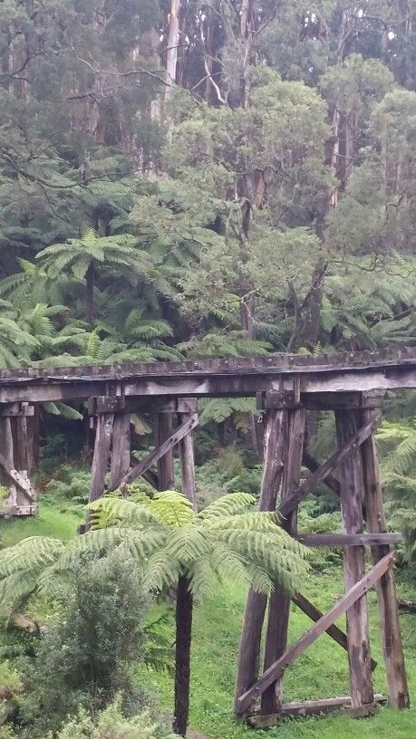 Puffing Billy track Emerald Victoria