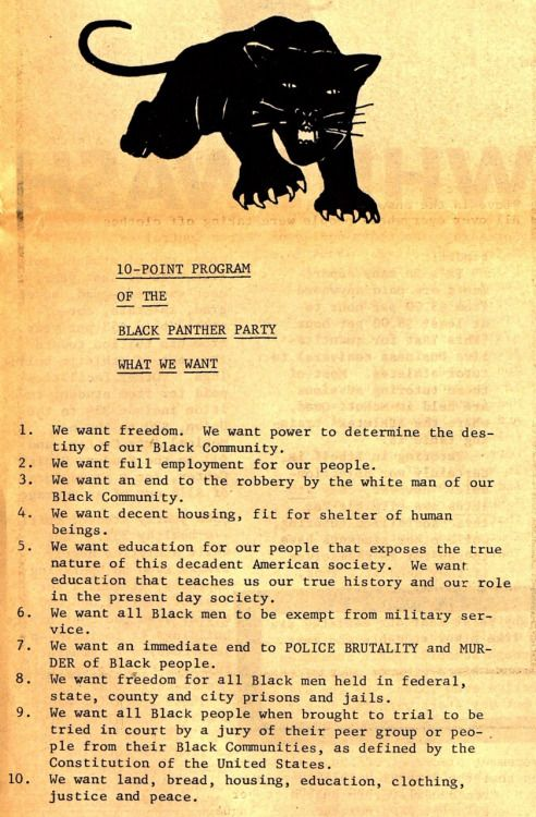 Black Panther Party African American Revolution
