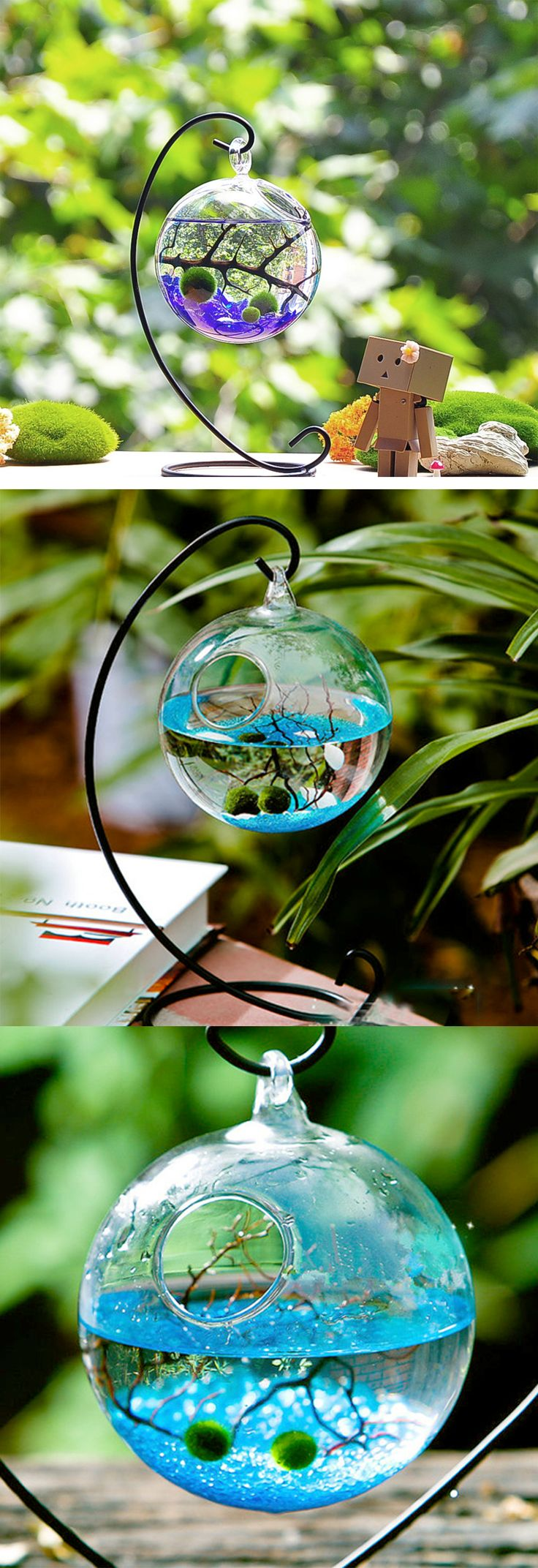#Marimo #Terrarium kit comes with two easy-to-care-for algae balls and…