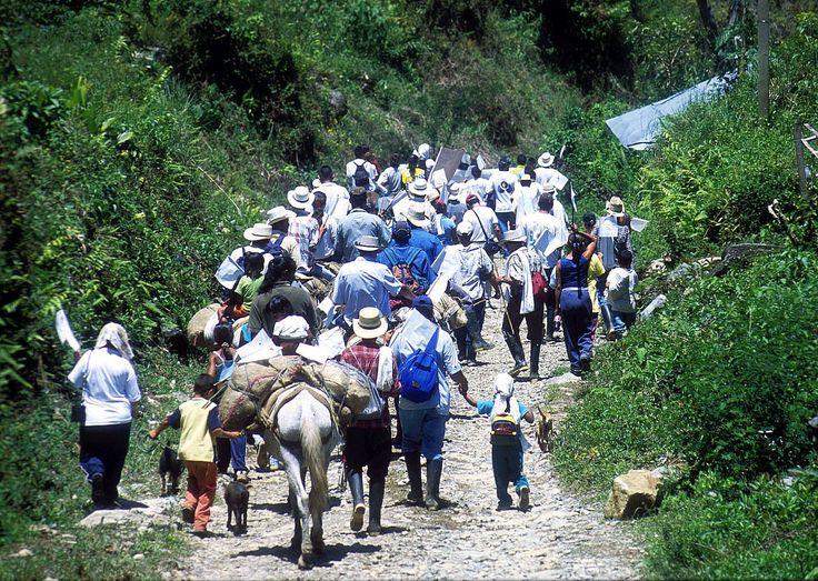 Nueva generación de carteles de Mexico no capta el mensaje del gobierno