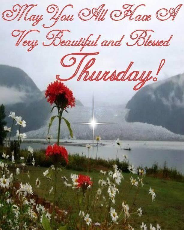 Best Thursday Wishes Quote: 156 Best Thursday Humor Images On Pinterest