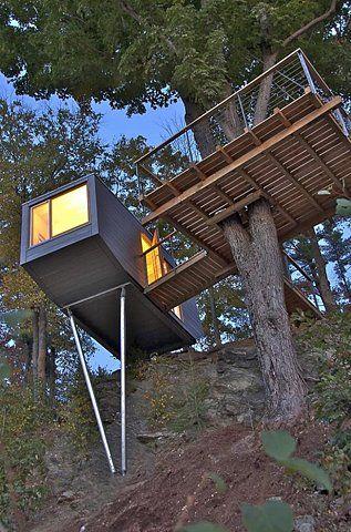 Tree House dream house for aure