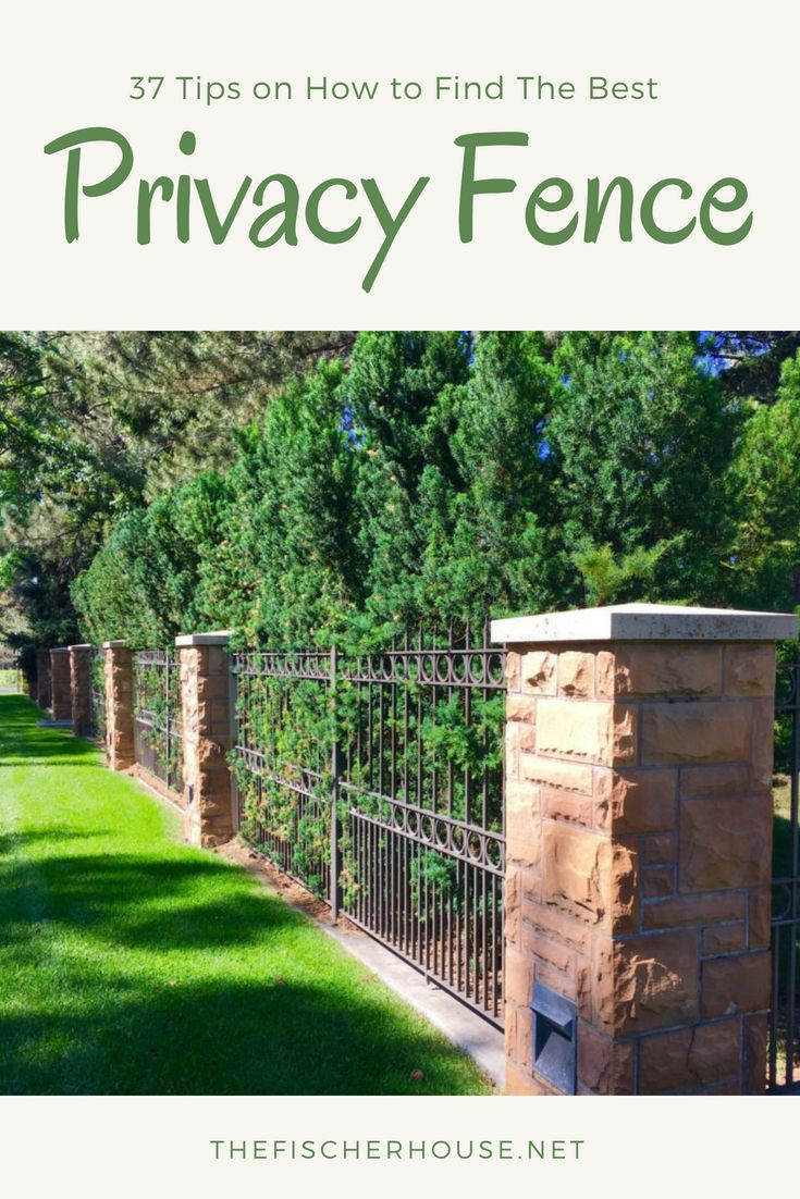 How to Find Ideas for Fences