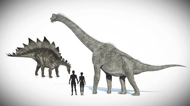 That's a Fact - Dinosaurs and Humans by Institute for Creation Research. Did humans and dinosaurs co-exist?  Are dinosaurs in the Bible?  See what lab tests show about the actual age of dinosaur bones.