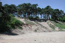 Sandhausen – Wikipedia