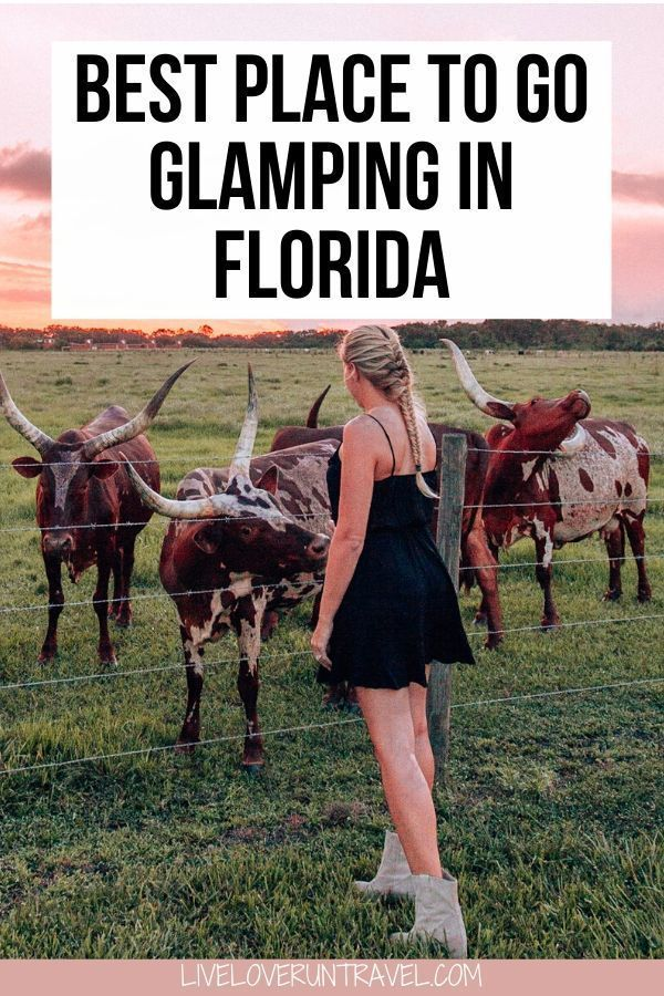 Where To Go Glamping In Florida A Westgate River Ranch Review Couple Getaway Florida Travel Go Glamping