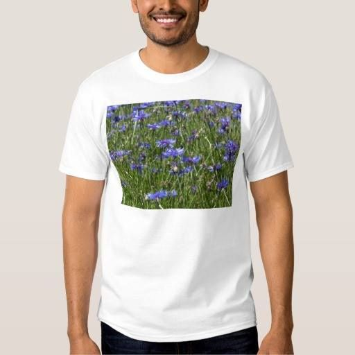 (Blue cornflowers in a field shirt) #Annual #Beautiful #Blossom #Blue #Botany #Close #Colored #Cornflower #Detail #Ecosystem #Environment #Farm #Field #Fields #Flora #Flower #Garden #Gardening #Green #Habitat #Herb #Little #Macro #Meadow #Mediterranean #Nature #Organic #Outdoor #Plant #Protection #Small #Species #Summer #Wild #Wildflower is available on Funny T-shirts Clothing Store   http://ift.tt/2dYzHe6