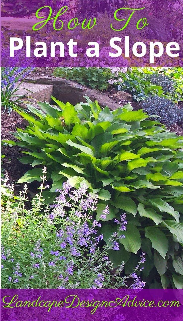 Landscape ideas for sloped areas in shade - Best 25 Hillside Landscaping Ideas On Pinterest Sloped Backyard Landscaping Backyard Hill Landscaping And Sloped Garden