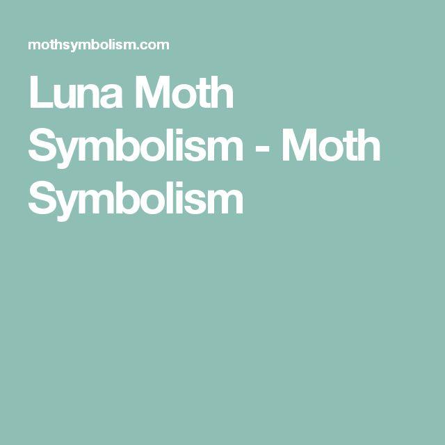 Luna Moth Symbolism - Moth Symbolism