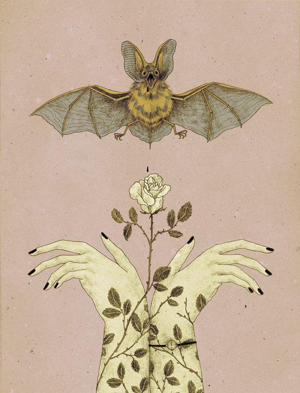 Vampire series by Monica Barengo #illustration #bat