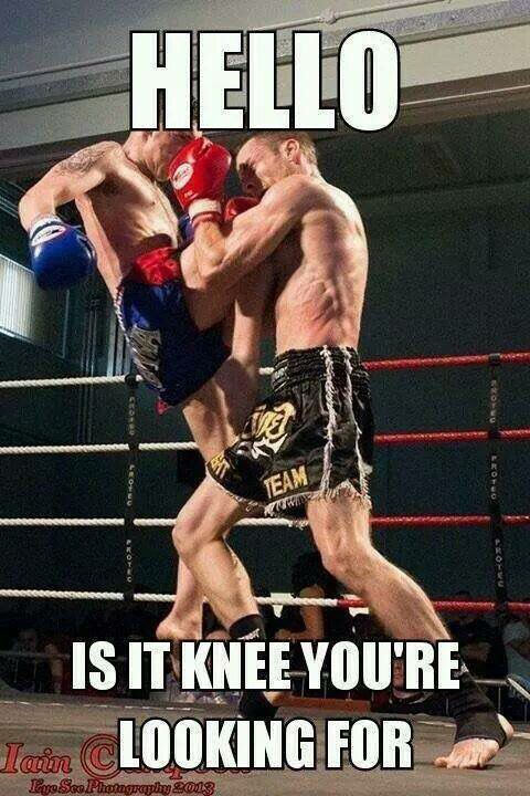 martial arts and mma humor post from Bullshido on facebook Follow Bullshido
