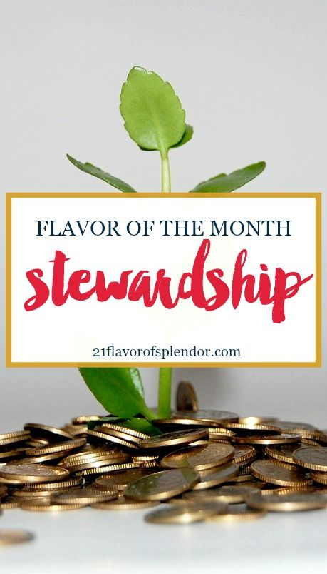 Understanding and practicing true stewardship is the key to every journey to financial peace and financial freedom. Click…