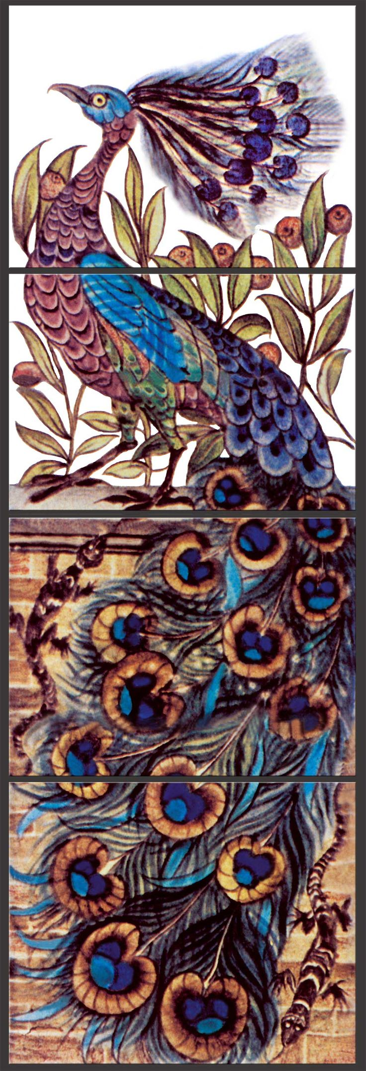 best 25 peacock artwork ideas on pinterest peacock art