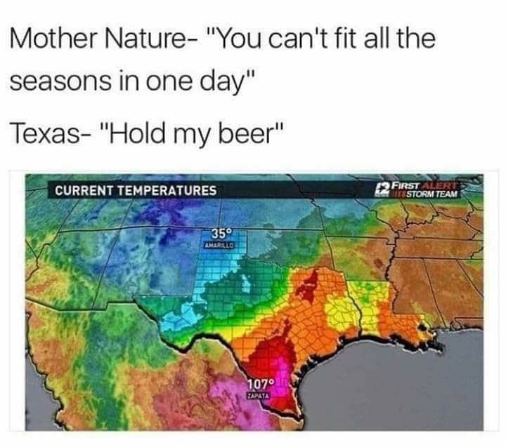 Pin By Garry Gutierrez On Great State Of Texas In 2020 Funny Pictures Memes Funny