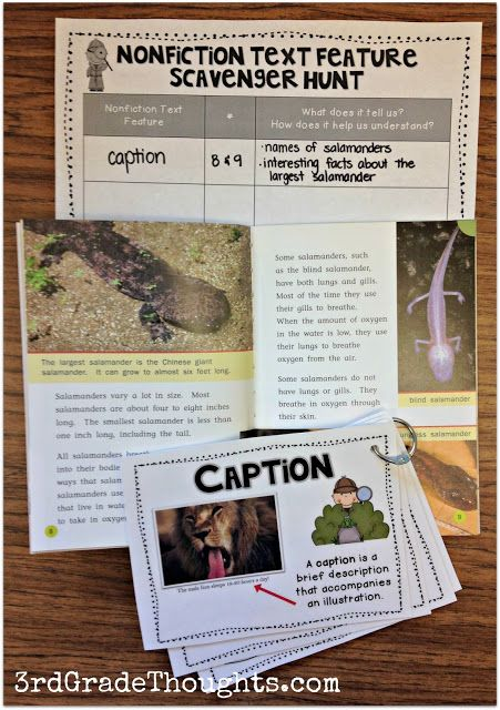 "Teaching nonfiction text features using a ""scavenger hunt""-style game keeps it engaging and encourages students to think of how and what the text feature teaches them."
