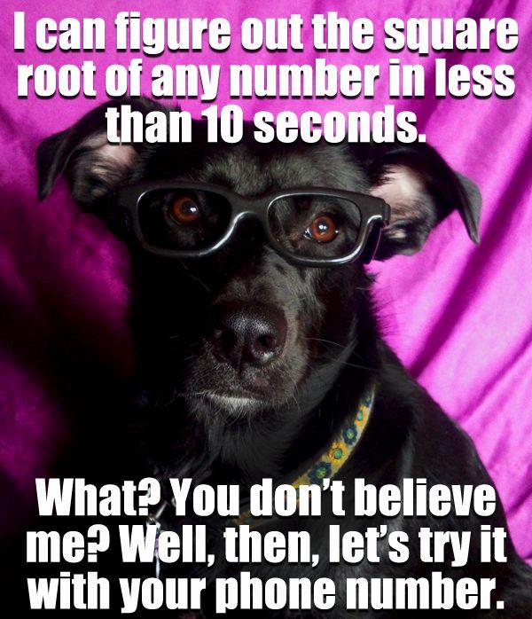 Math Teacher Pick Up Lines :)