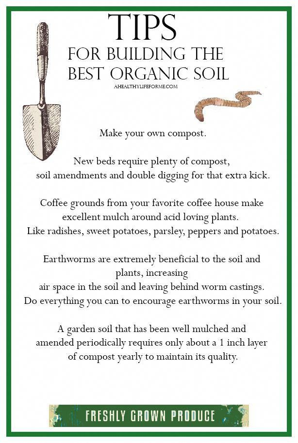 The Chemicals In The Fertilizers Used In Conventional Gardens In Fact Break Down The Health Of The So Garden Soil Organic Gardening Tips Organic Gardening Soil