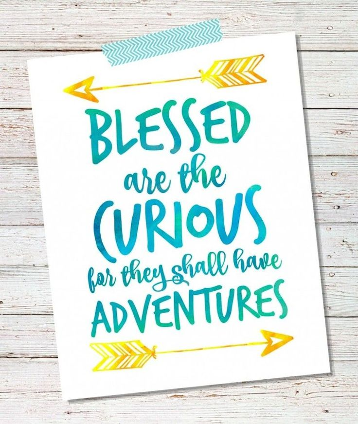 14 Blessed-are-the-Curious-for-they-shall-have-adventures-768x910