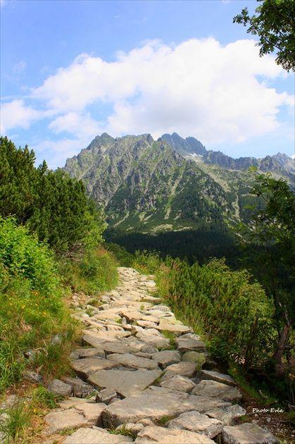 Tatranská magistrála by Evča (High Tatras, Slovakia)